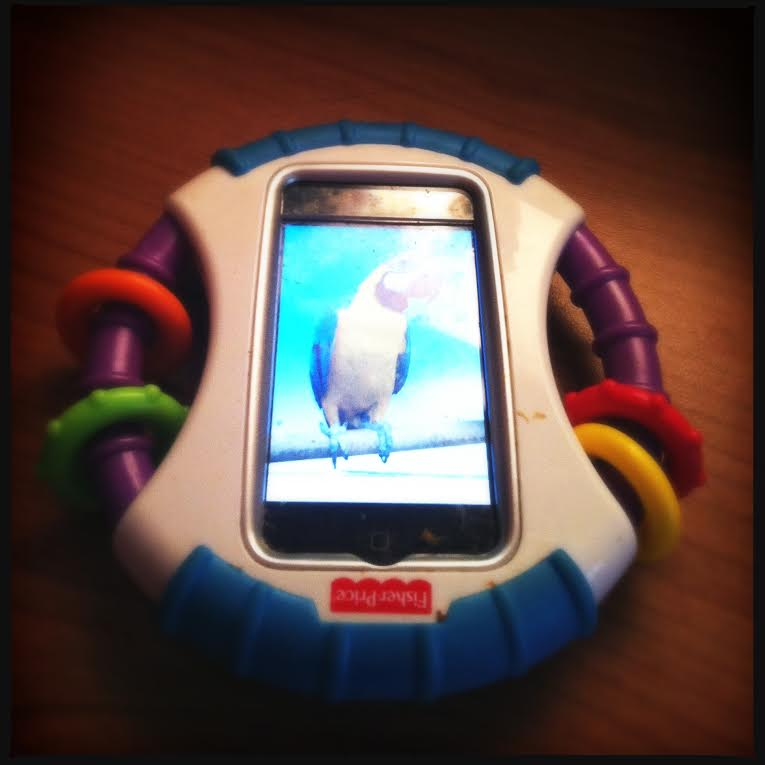 fisher_price_iphonehouder